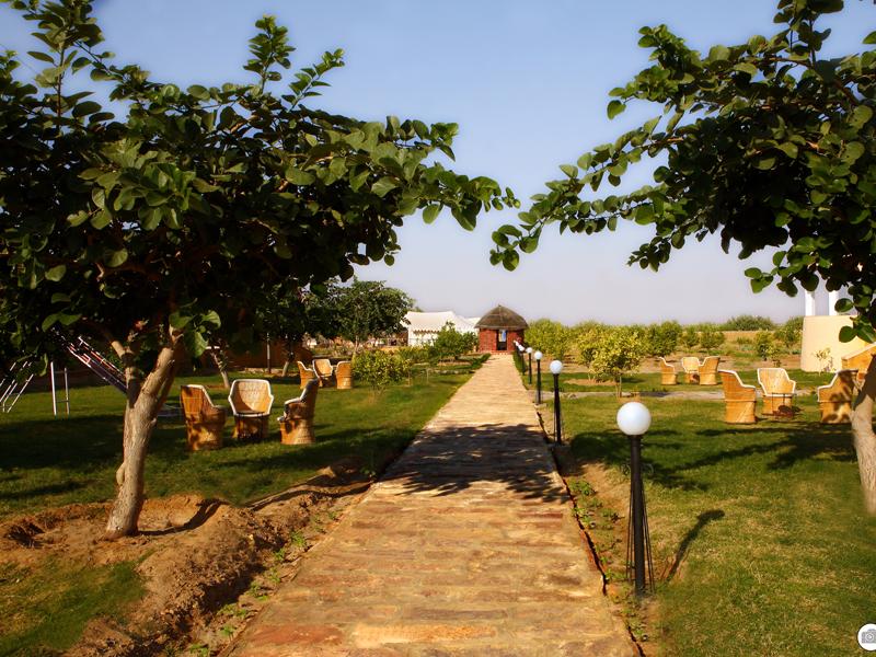 Garden Area Mirvana Resort